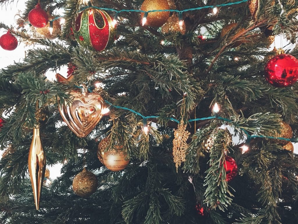 Christmas decorations that are harmful to dogs and cats