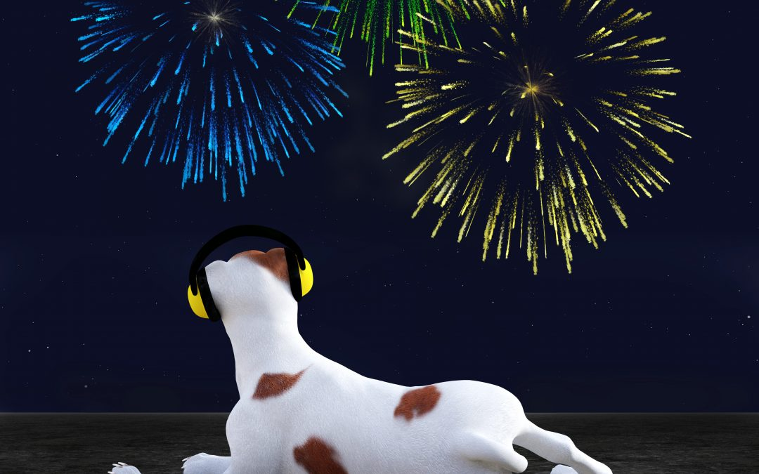 How To Keep Your Pets Safe During The July 4th Holiday